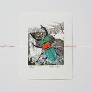 Bo Erik Lundqvist - Litografi - Bugg