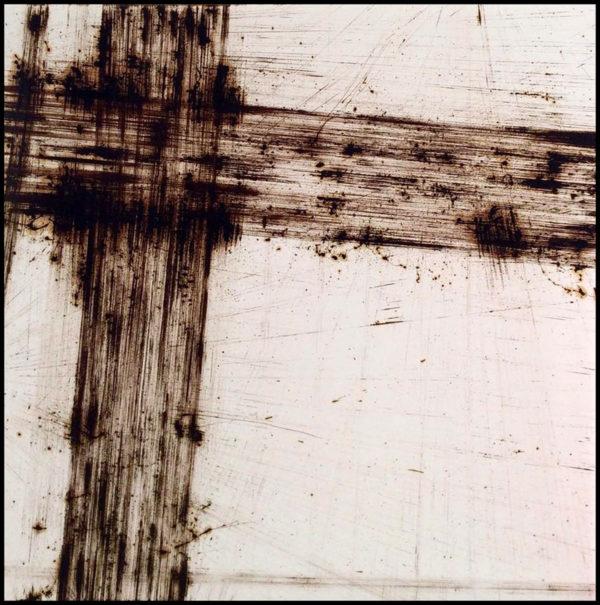 Andrej Zverev - Monochromatic Fields