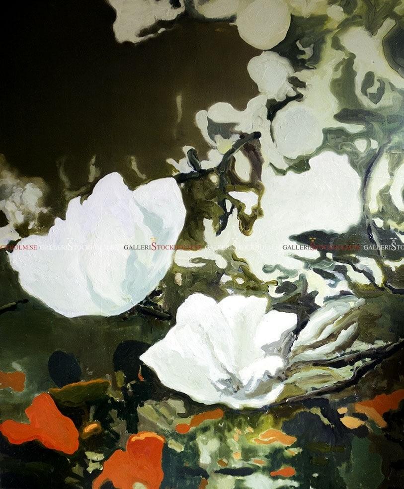 Joakim Allgulander - Magnolia
