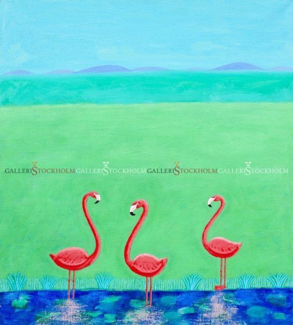 Jonas Fredén - Flamingos