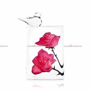 Lina Lundberg - rosor rosa