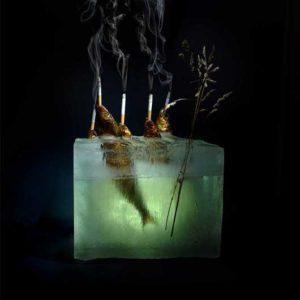 Andrej Zverev - Fotokonst 11