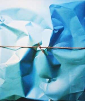 Yrjö Edelmann - Parcel in Blue Harmonic Motion
