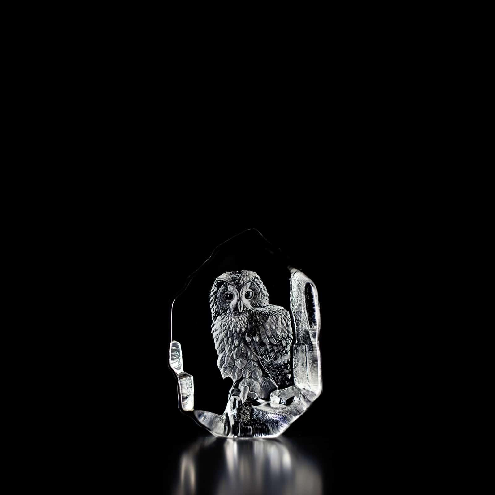 Mats Jonasson - Cat Owl