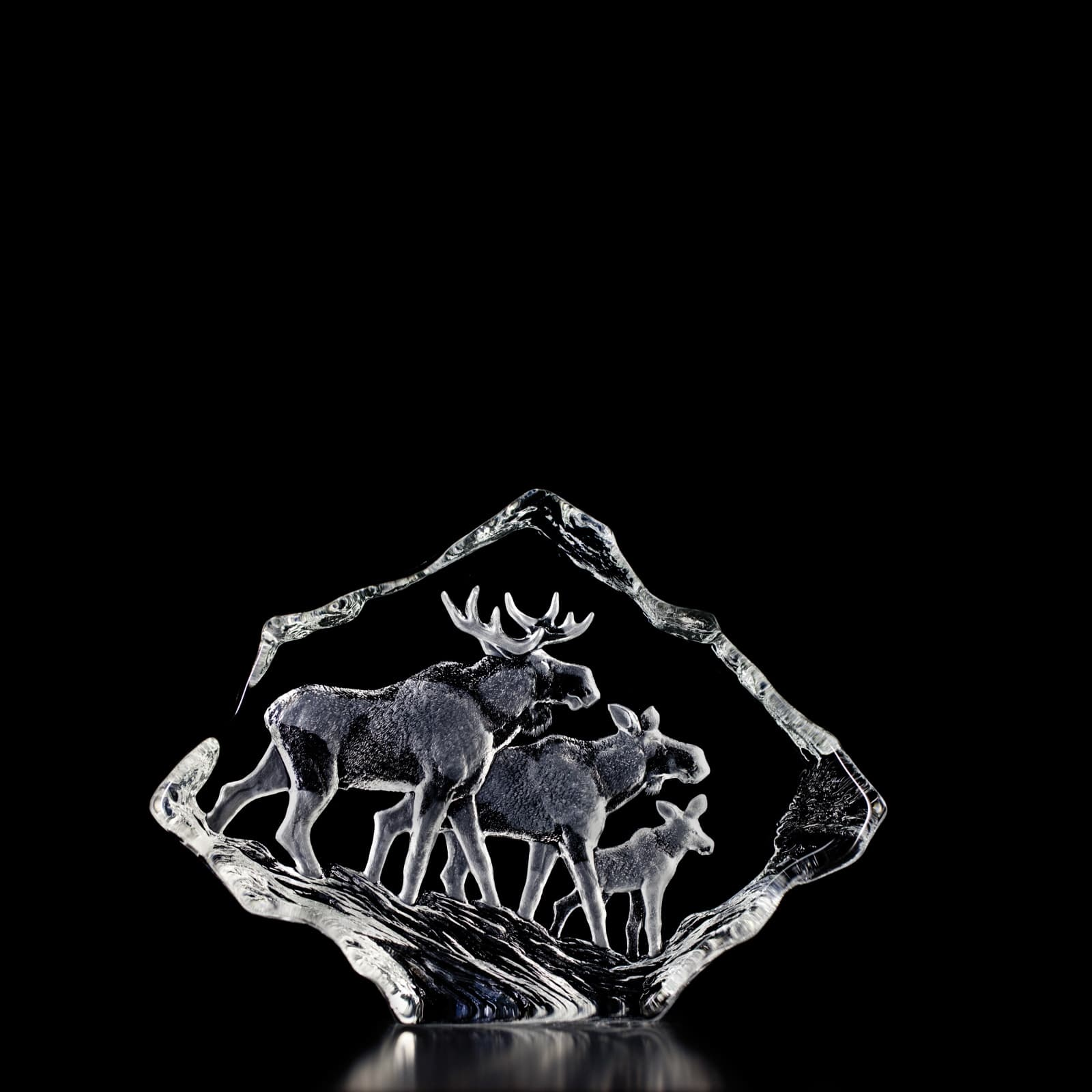 Mats Jonasson - Elk Family