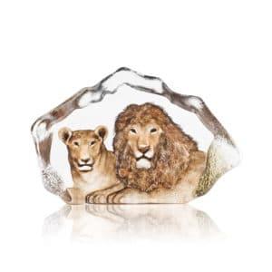 Mats Jonasson - Lions