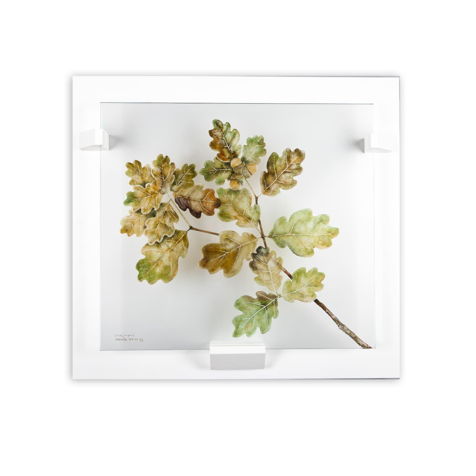 Mats Jonasson - Oak Leaves